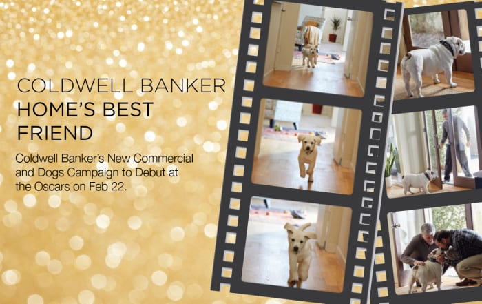 Coldwell Banker at the Oscars