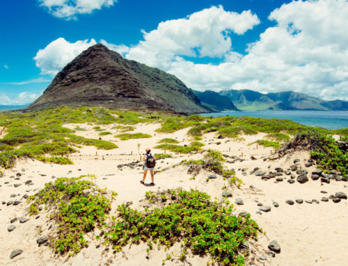 Enjoy the Sunshine with These Five Outdoor Adventures