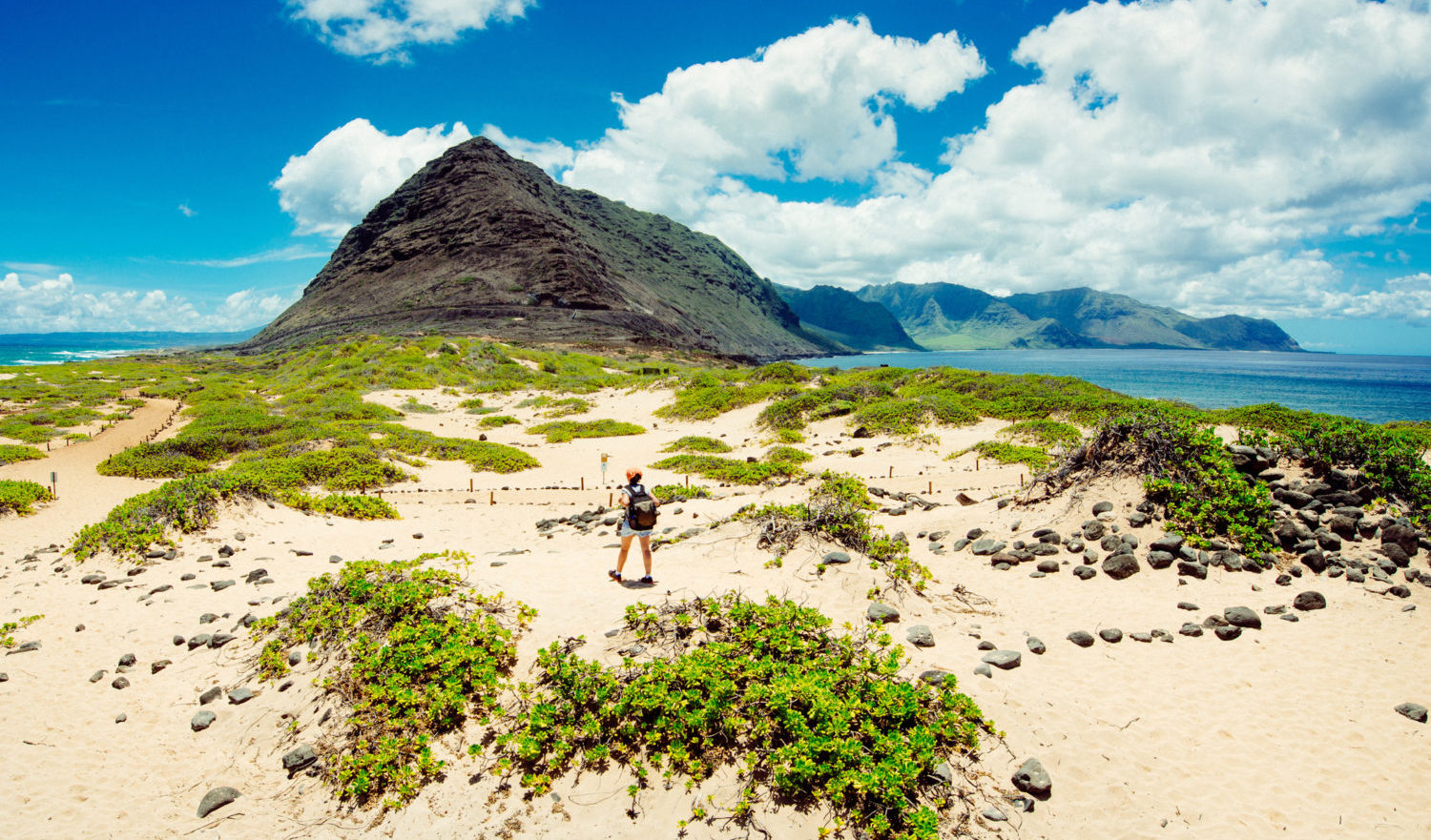 Woman hiking on the dunes of Ka'ena Point in Oahu. Hawaii.