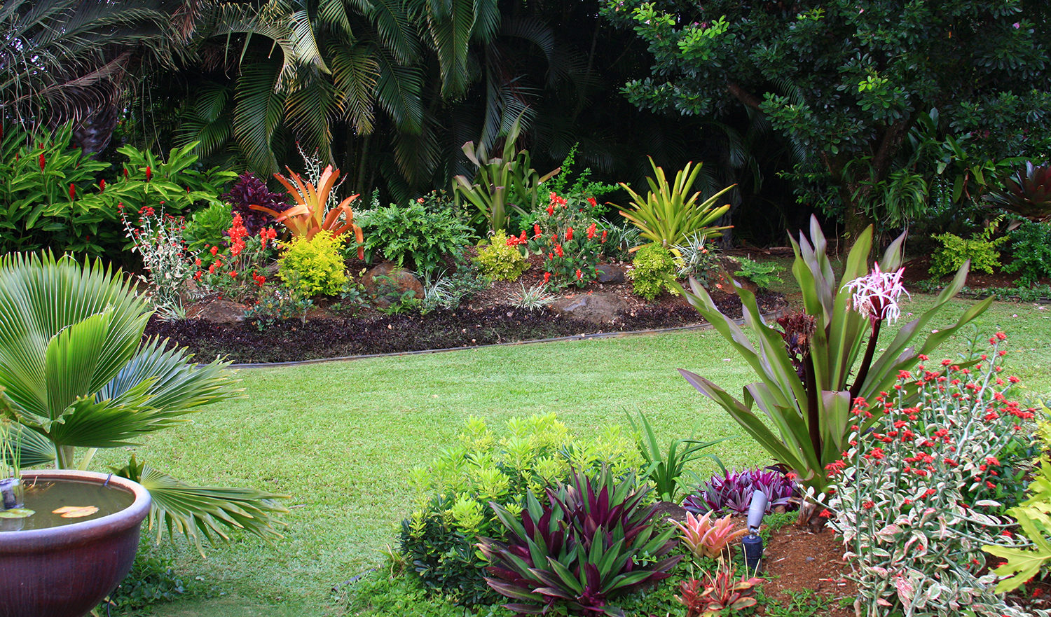 A backyard garden on Hawaii