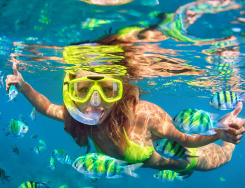 Best Bets: Seven Spots to Get Your Snorkeling Fix in Oahu