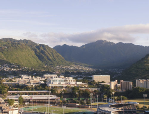 The Scoop on Schools in Honolulu